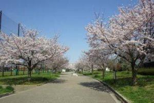 都立宇喜田公園