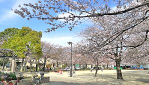 宇喜田さくら公園
