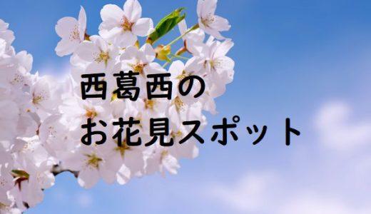 西葛西でおすすめのお花見スポット(桜がある公園)11選